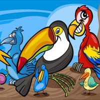 Exotic Birds Coloring
